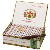 Macanudo Hampton Court Cafe Tube Box of 25