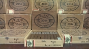 Viaje Collaboration Box of 20