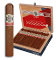 AVO Syncro Toro box of 20