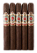 Ashton Symmetry Sublime 5 Pack
